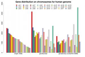 基因在每条染色体上的数目与密度